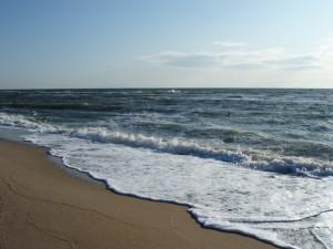 Юг – берег Азовского моря