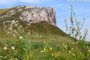 Скала писчего мела, образовавшегося более 80 млн. лет назад рядом с Белокузьминовкой